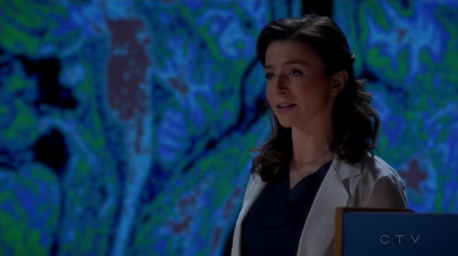 Grey's Anatomy S11E13 - Staring at the End